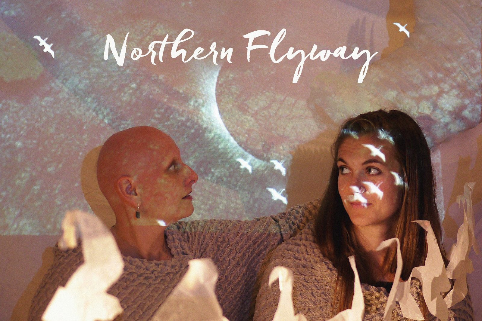 Northern Flyway – an audio-visual production exploring the ecology, folklore, symbolism and mythology of birds and birdsong.