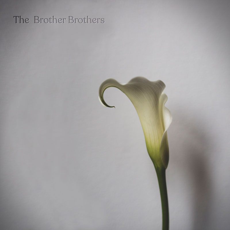 The Brother Brothers calla lilly review