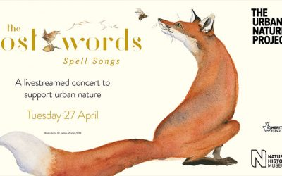 Spell Songs at the Natural History Museum is RESCHEDULED for Tuesday 27 April