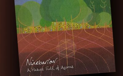 A Pocket Full Of Acorns – Ninebarrow