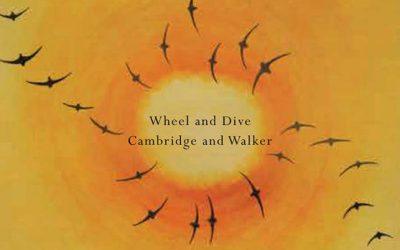 Wheel & Dive – Cambridge & Walker